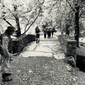 Black and white view of the bridge